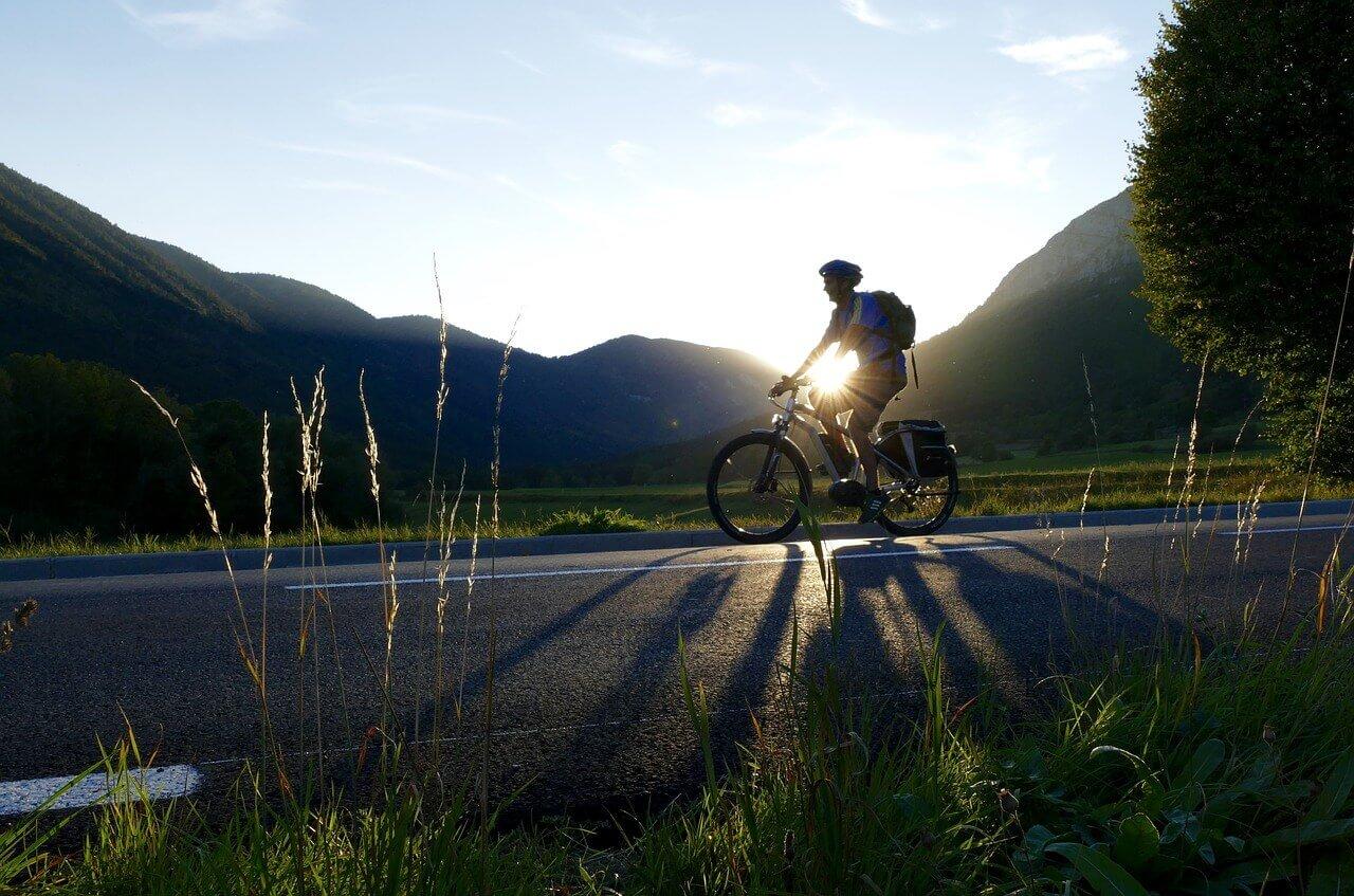 E-Bike Pulse Trekking budżetowe<strong> rowery elektryczne</strong>