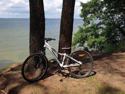 Carrera – tani idobry rower dladziecka nacałodniową wycieczkę wteren