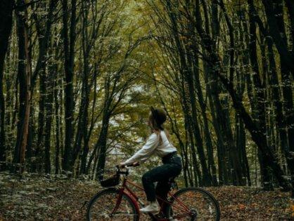 Pomysł na prezent – rower jako inwestycja w zdrowie na lata